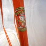 Crest on downtube